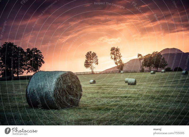 Sky Nature Green Summer Landscape Clouds Dark Meadow Autumn Horizon Weather Orange Illuminate Climate Fantastic Hill