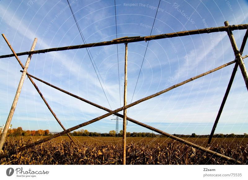 autumn field Field Autumn Sky Electricity Wood Pole Agriculture Yellow Sun blue Rope linkage Scaffold Maize