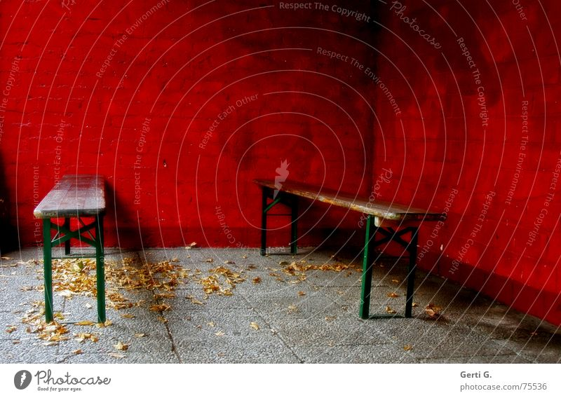 invisible Lie Park bench Ale bench Beer Red Wall (building) Wall (barrier) Leaf Autumn Seasons Green Guest 2 Event Near Narrow Places Deserted Empty Dark