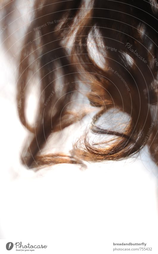 Hair and hairstyles Natural Brown Esthetic Simple Curl Brunette Long-haired