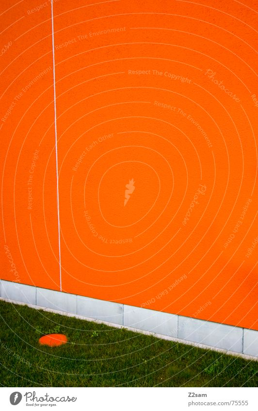dotted Meadow Grass Green Flashy Abstract Wall (building) Point Line Orange Colour saturation Shift work Golf
