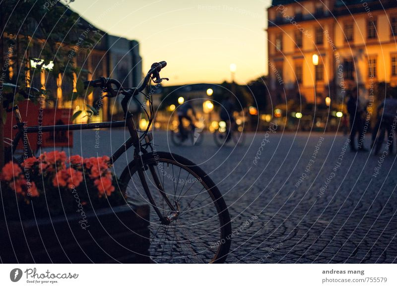 bicycle Vacation & Travel Tourism Cycling tour Town Populated Places Pedestrian Relaxation Driving Wait Adventure Beginning Leisure and hobbies Break Sports