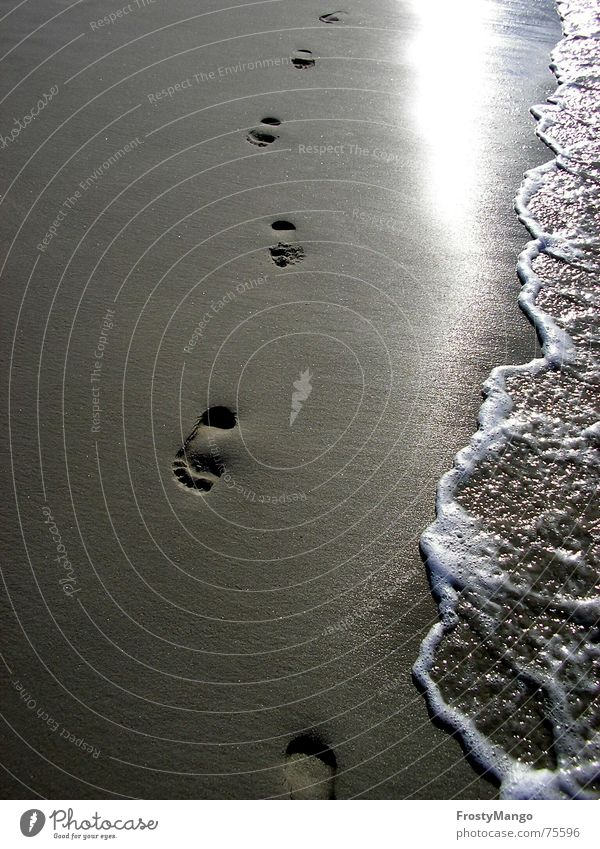 Sand in my shoes Ocean Footprint Toes Grain of sand Air Feet Water Sun sea of salt Barefoot