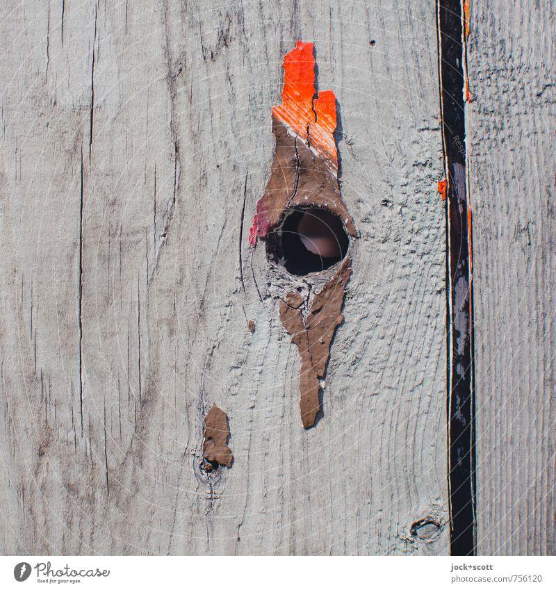 cockscomb Work of art Subculture Knothole Decoration Wood Paint traces Wood grain Simple Firm Broken Near Dry Dedication Serene Refrain Colour Creativity Senses