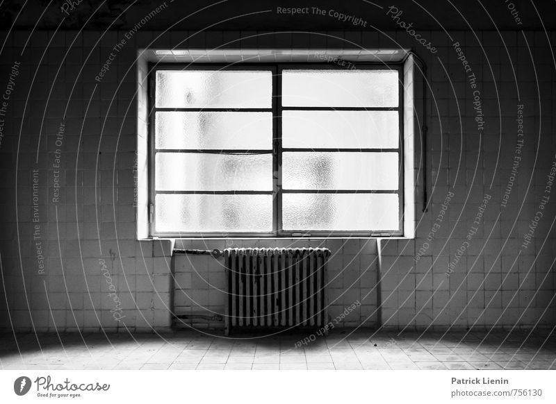 Out of service Deserted Swimming pool Manmade structures Building Architecture Wall (barrier) Wall (building) Window Monument Old Threat Dirty Creepy Town