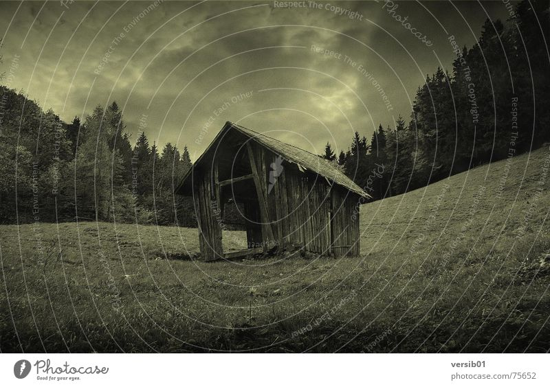 Dark prospects House (Residential Structure) Alpine pasture Meadow Forest Thunder and lightning Rain Hut