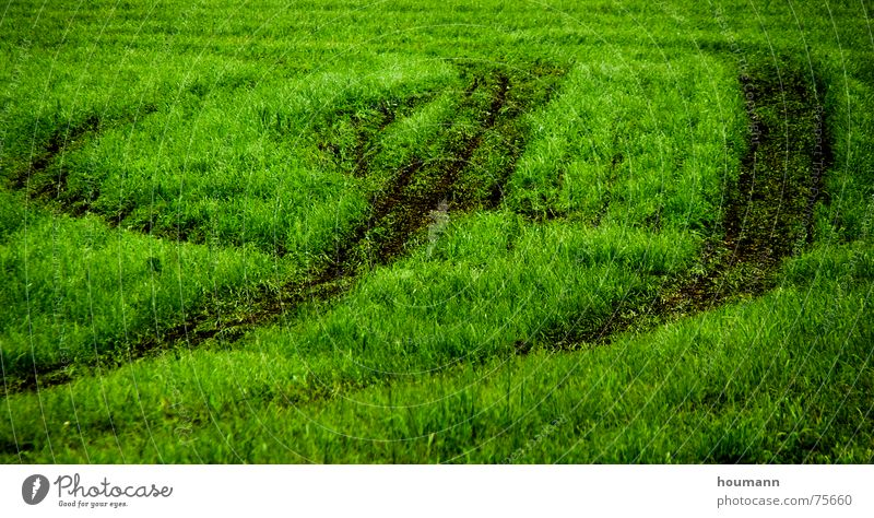 Tractose 2 Physics Pattern Green Grass Field tractor tracks shadows Warmth Shadow Tractor track