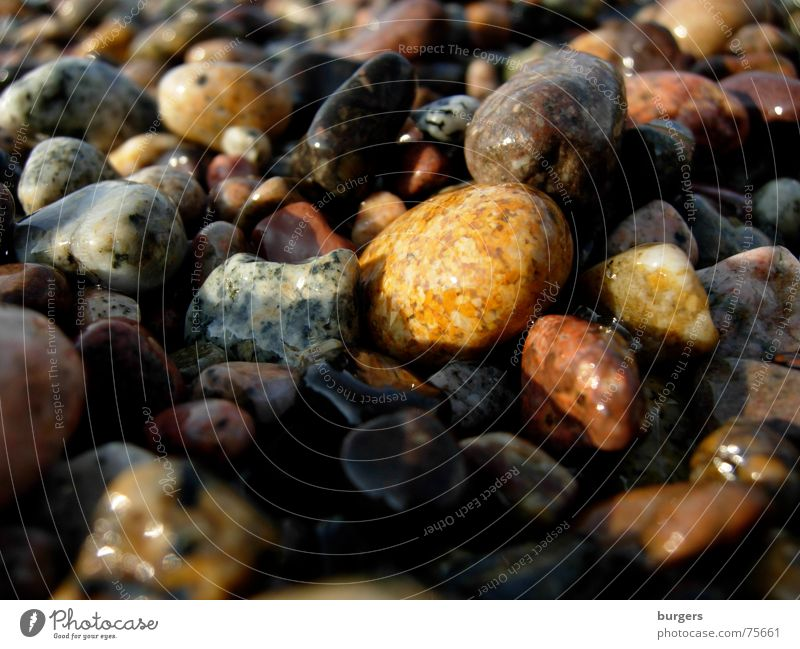 The colorful pebbles of Porto Pebble Multicoloured Red Brown White Black Beach Corsica Ocean Glittering Wet Dappled Exterior shot Orange Stone Floor covering