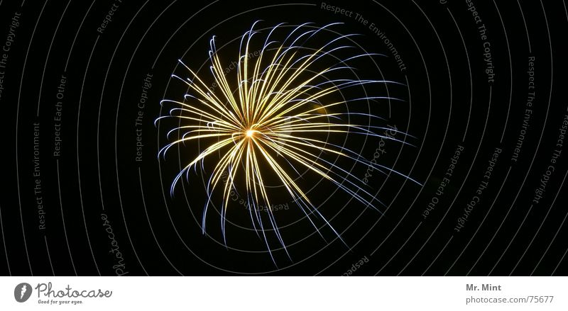 Joy Happy Blaze New Year's Eve Firecracker Fairs & Carnivals Justice Explosion Holy Synod