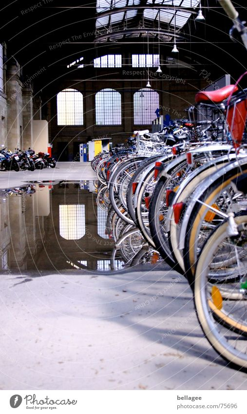 Roof damage? Puddle Bicycle Reflection Window Train station Hollow Water Damage Window pane Interior shot