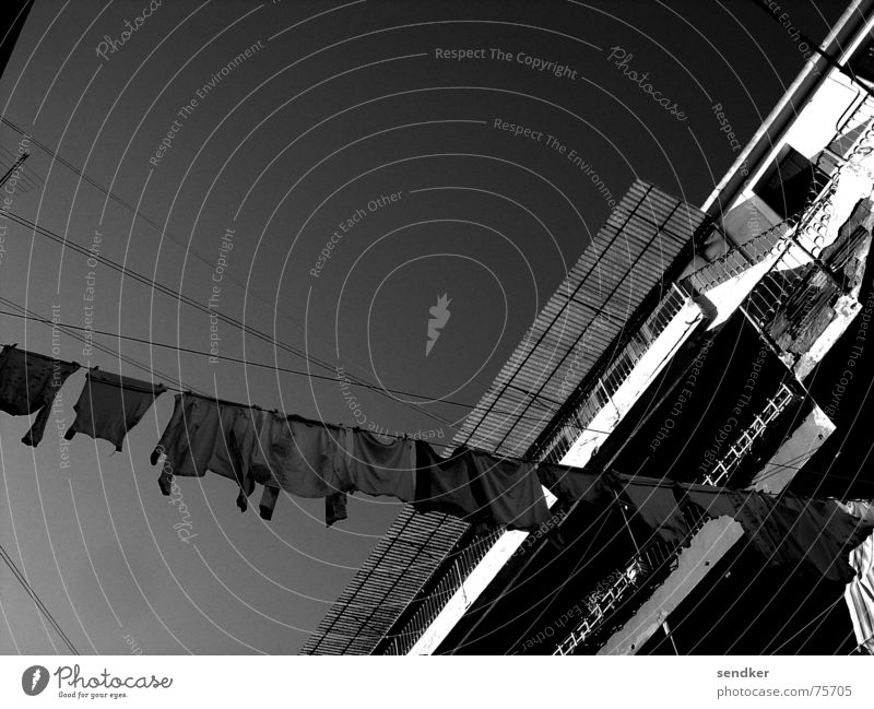 Venice my Love Italy Laundry Clothesline Old times Black & white photo Sky Photos of everyday life