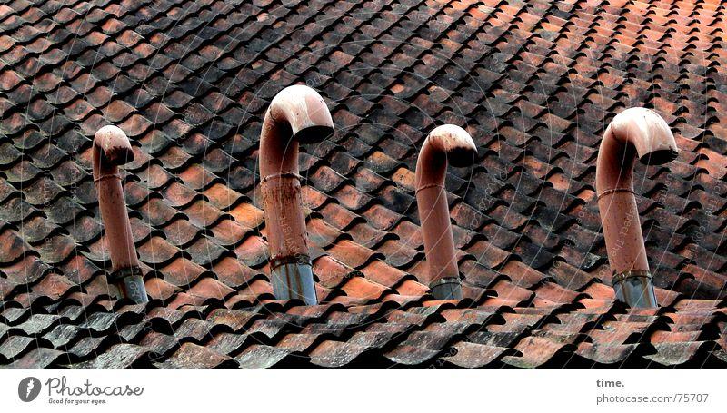 Red Metal Roof Broken Markets 4 Derelict Brick Statue Pipe Swan Roofing tile Humble Ventilation Emission