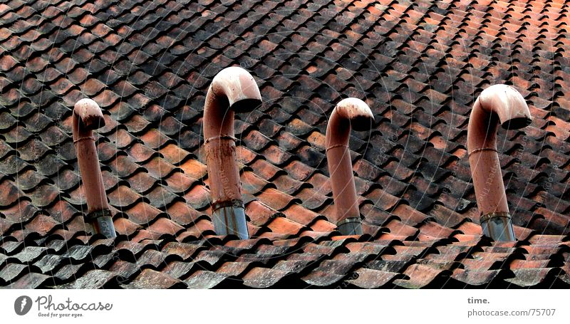 Red Metal Roof Broken Markets 4 Derelict Brick Statue Pipe Swan Roofing tile Humble Ventilation Emission