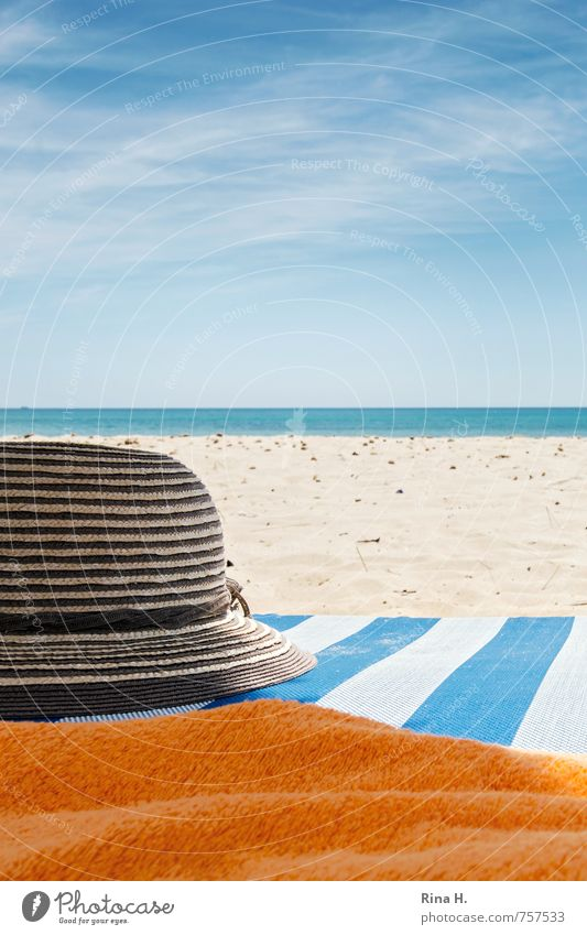 Sky Vacation & Travel Blue White Summer Sun Ocean Beach Warmth Bright Horizon Orange Tourism Joie de vivre (Vitality) Hat Summer vacation