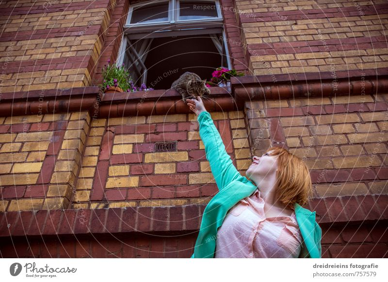 The cat on the windowsill Human being Feminine Woman Adults 1 Plant Flower Blossom Pot plant House (Residential Structure) Wall (barrier) Wall (building) Facade