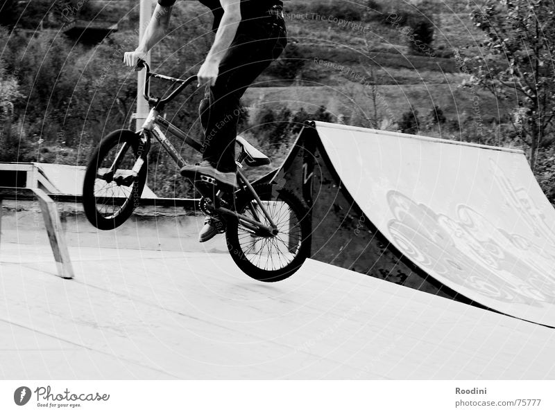 down they all come Park Halfpipe Jump Ramp Ski jump Rotation Sports Action Stunt Bicycle Motorcyclist Style Lifestyle Punk Risk BMX bike skaterpark 360