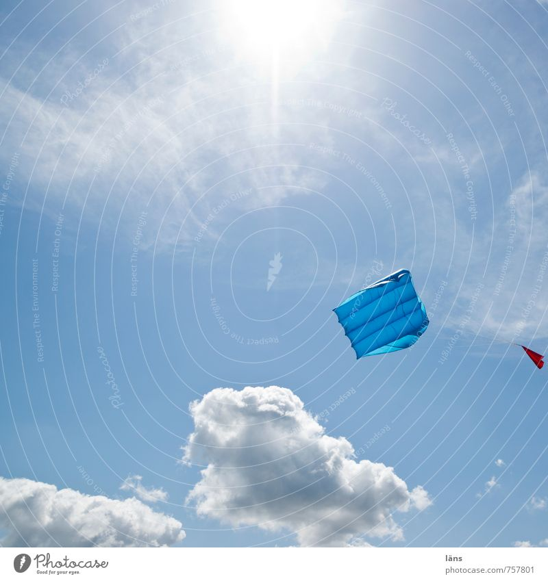Sky Vacation & Travel Blue Beach Freedom Leisure and hobbies Wind Tourism To hold on Desire Sustainability Kite Hang gliding
