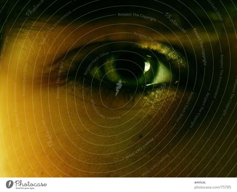"""I see everything"" Green Skin color Dark Eyelash Eyebrow Eyes Bright"