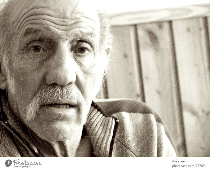 Man Old Wrinkles Grandfather Afternoon Moustache Furrowed brow