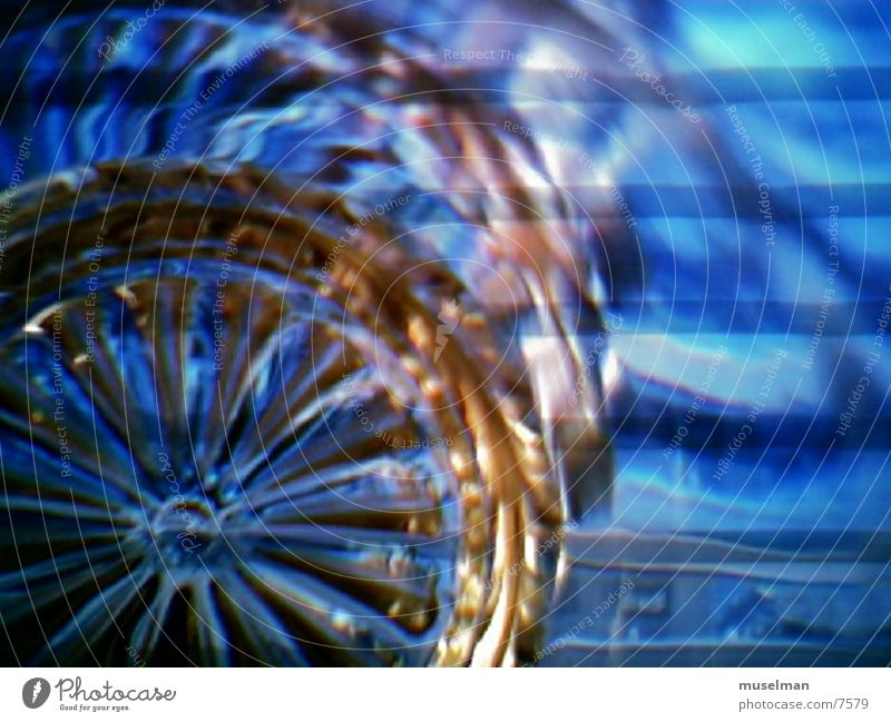 Blue Style Photographic technology
