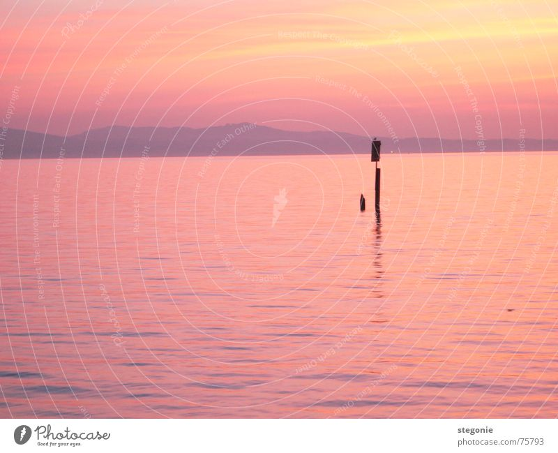 evening mood in pink Sunset Natural phenomenon Romance Pink Red Dream Relaxation Exterior shot Landscape Nature Water Lake Constance Evening Sky Mountain