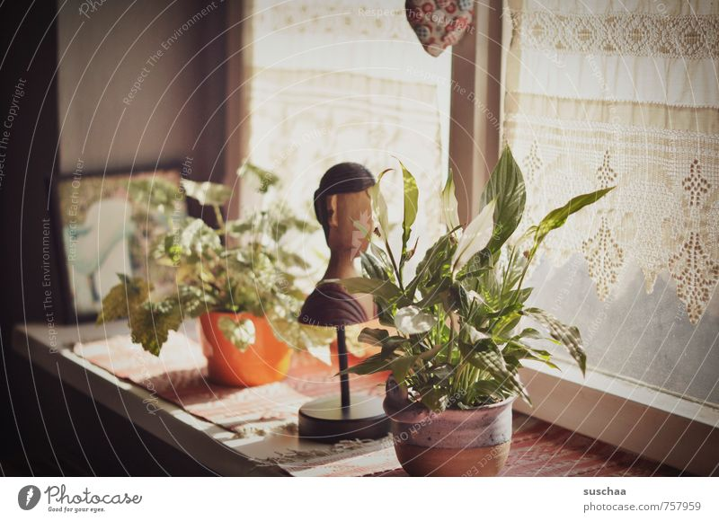 windowsill in suschaatown Living or residing Flat (apartment) Decoration Sculpture Old Retro Car Window Window board Houseplant Wooden figure Subdued colour