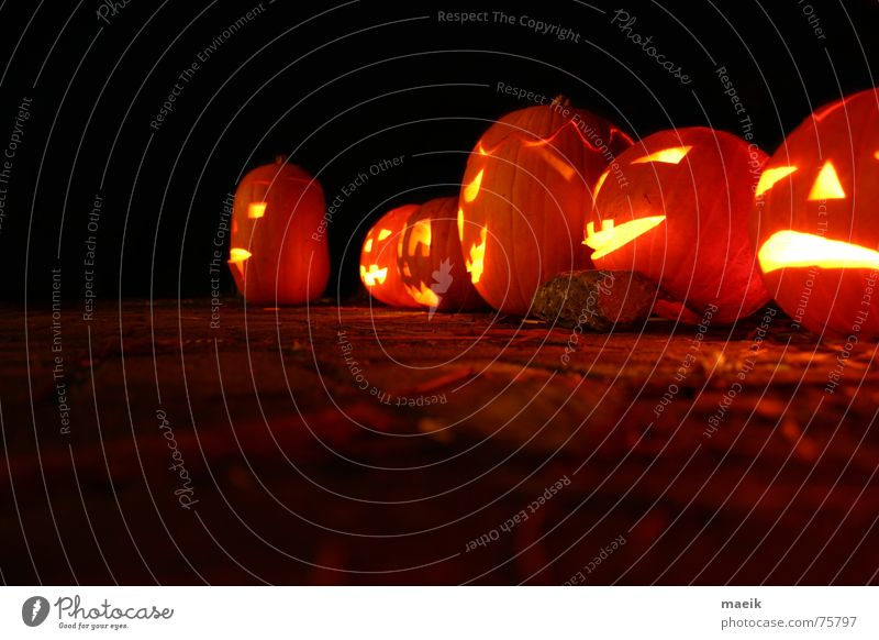 Pumpkin heads Hallowe'en Red Yellow Concave Night Black Candle Creepy Calm Physics Night shot Dark background Long exposure Light Orange Feasts & Celebrations
