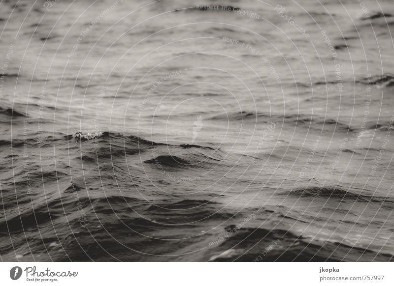 restlessness Adventure Ocean Waves Aquatics Swimming & Bathing Sailing Dive Nature Water Bad weather Storm Wind Gale Dark Wild Wanderlust Fear Movement Cold