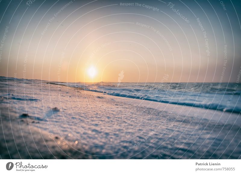 Winter in Denmark Well-being Contentment Senses Relaxation Calm Vacation & Travel Tourism Trip Adventure Far-off places Freedom Environment Nature Landscape