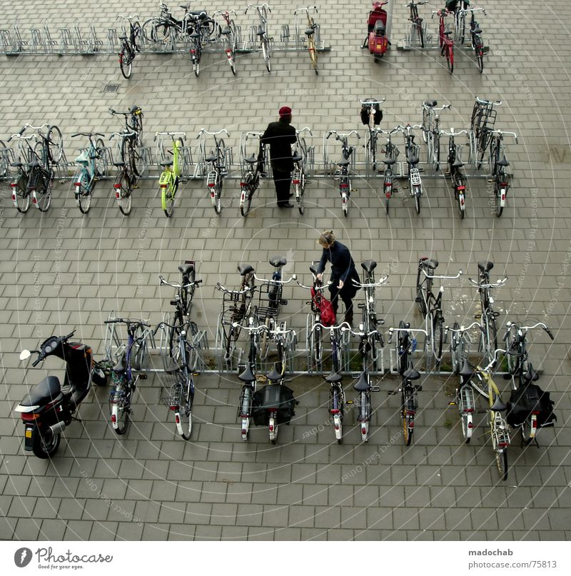 DUTCH TRAFFIC Bicycle lot Under People trafficker Human being Parking Woman Town Asphalt Gray Pedestrian Transport Pattern Background picture