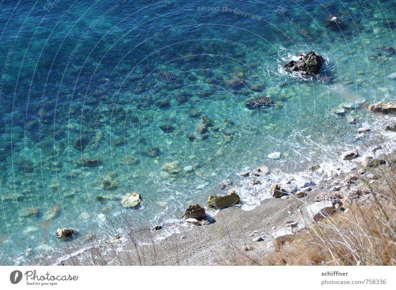Nature Blue Ocean Landscape Beach Environment Coast Grass Stone Rock Waves Beautiful weather Bay Turquoise Mediterranean sea Andalucia