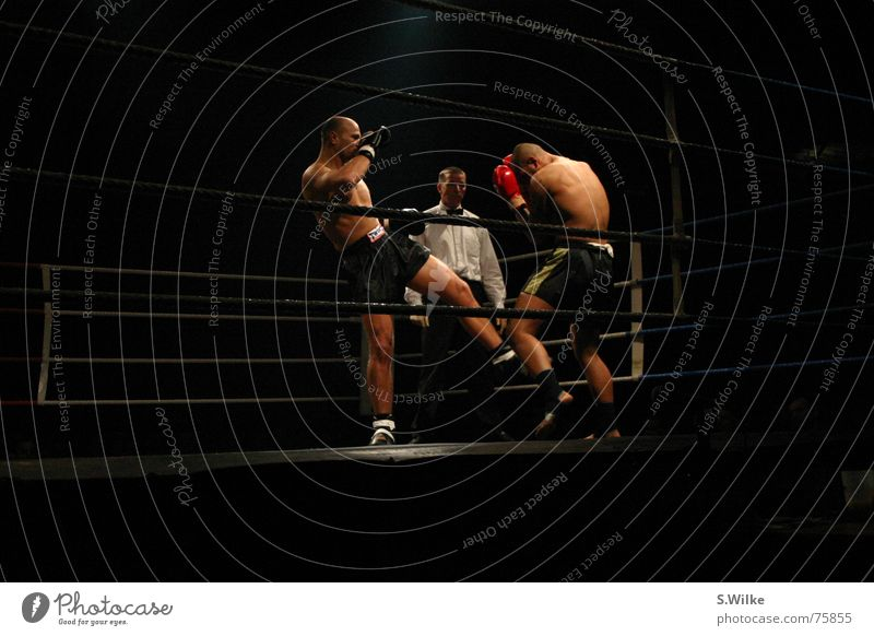Man Sports Dark Skin Loudspeaker Fight Martial arts Stage lighting Reliability Kickboxing