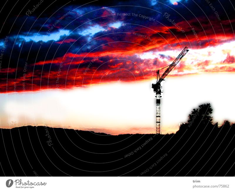 evening mood Storm clouds Force Dusk Crane Exterior shot Processed afterglows Calm Tasty