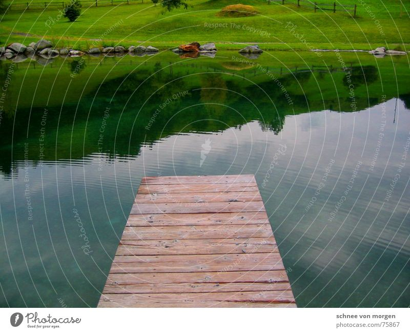 Jump in! Wood Lake Green Switzerland Footbridge Reflection Meadow Grass Calm Environment Tree Horizon Set Clean Cold Sky Mountain lake Nature Park Summer Water