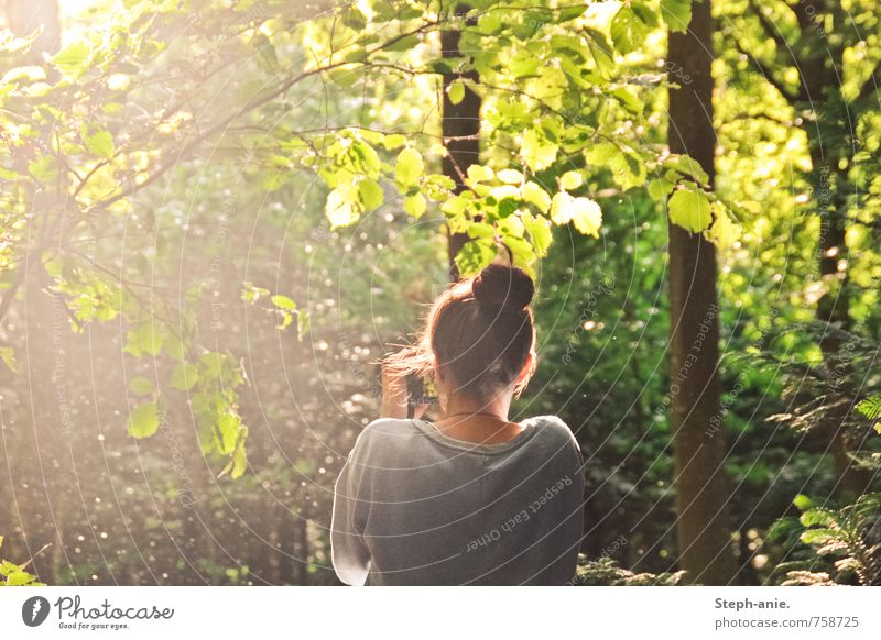 In the magic forest Feminine Young woman Youth (Young adults) Woman Adults 1 Human being Nature Summer Beautiful weather Tree Bushes Forest Chignon Observe