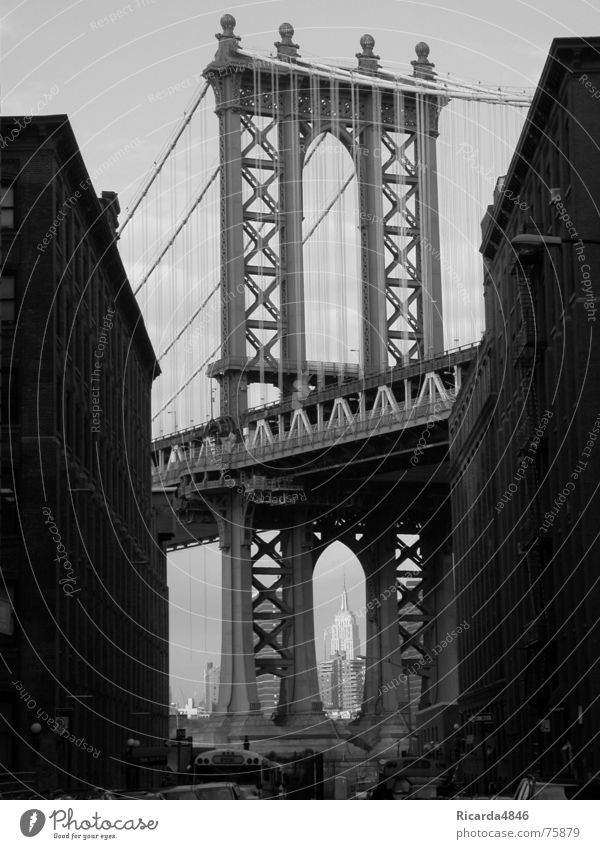 New York, New York Empire State building New York City USA High-rise Beautiful Brooklyn Bridge Americas Gray scale value Vista Wire cable Wirewalker Cable car