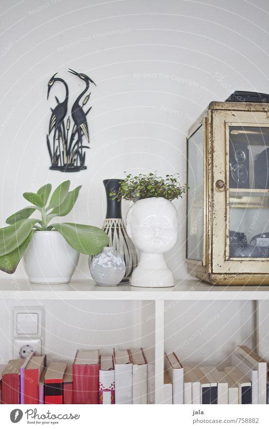 Beautiful Plant Interior design Flat (apartment) Living or residing Decoration Esthetic Book Furniture Vase Foliage plant Pot plant Bookshelf Collector's item