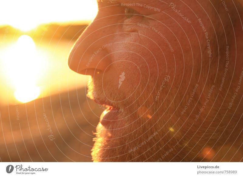 Katzo Human being Masculine Man Adults Friendship Head 1 30 - 45 years Sun Sunrise Sunset Sunlight To talk Brown Yellow Gold Orange Black Colour photo
