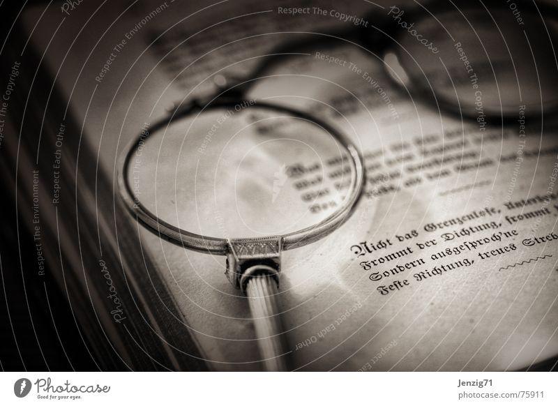 Read. Book Reading Library Optician Eyeglasses Poem Verse Lorgnon Lens Looking seal Prose