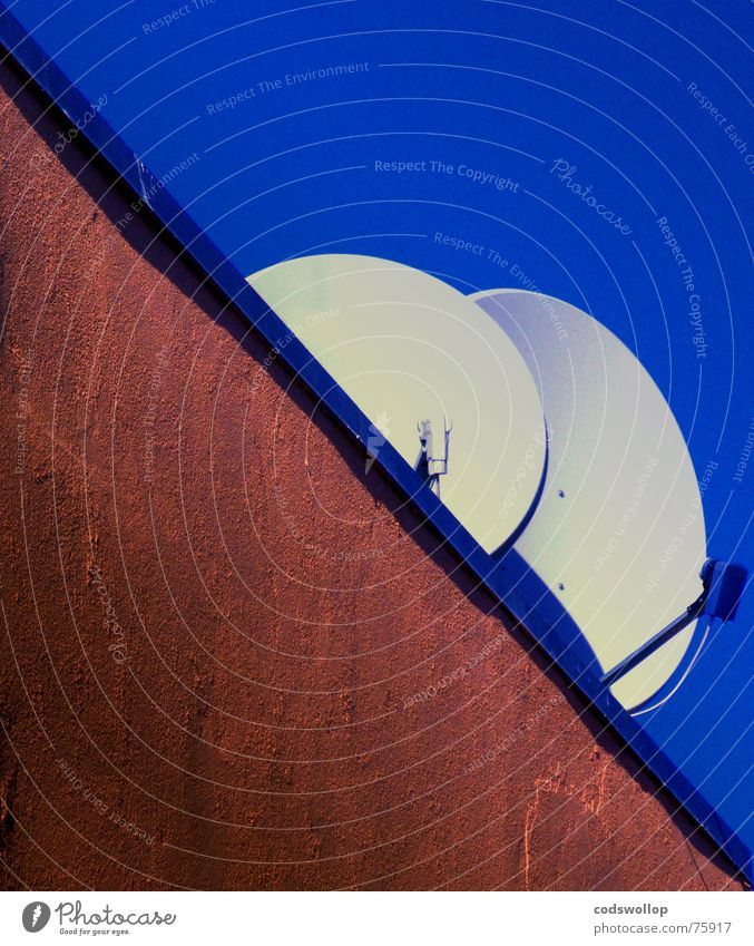digital couples 2 Narrow Sky Diagonal Wall (building) Roof White Email Communicate Television satalite dish Bowl receiver two close blue Crazy practice