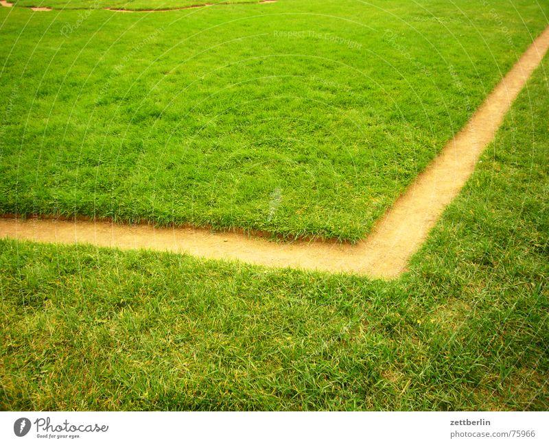 Meadow Grass Lanes & trails Line Park Corner Lawn Dresden Horticulture Interior courtyard Gardener Assassin Classicism Zwinger