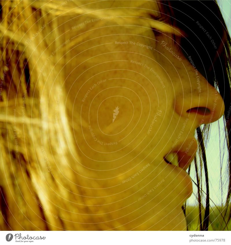 Woman Human being Sun Summer Face Landscape Hair and hairstyles Warmth Wind Illuminate Blow Pleasant