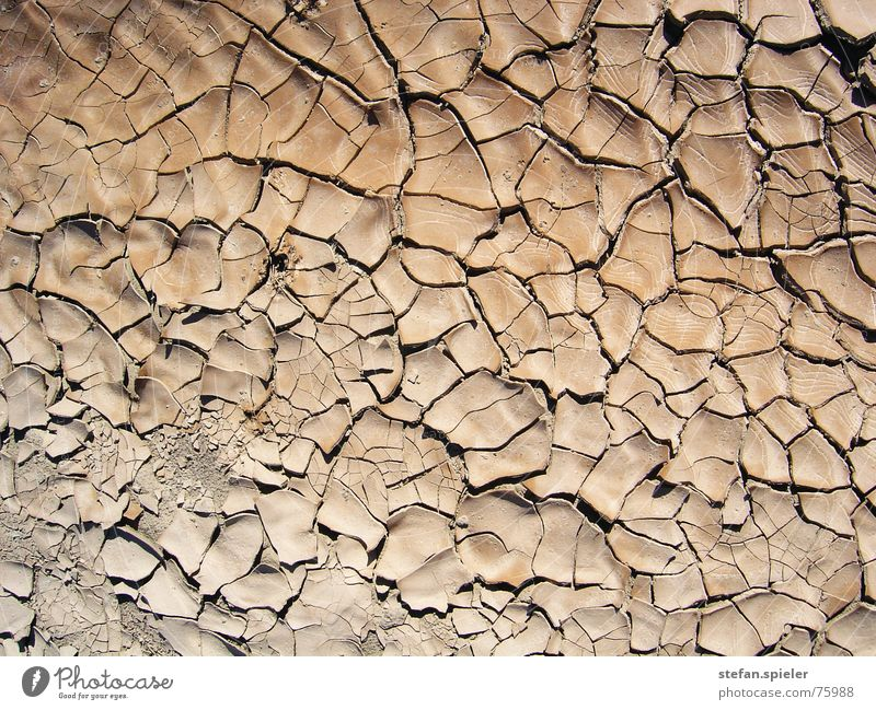 arid Dry Brown Hot Progress Crack & Rip & Tear Earth Desert Floor covering Tile