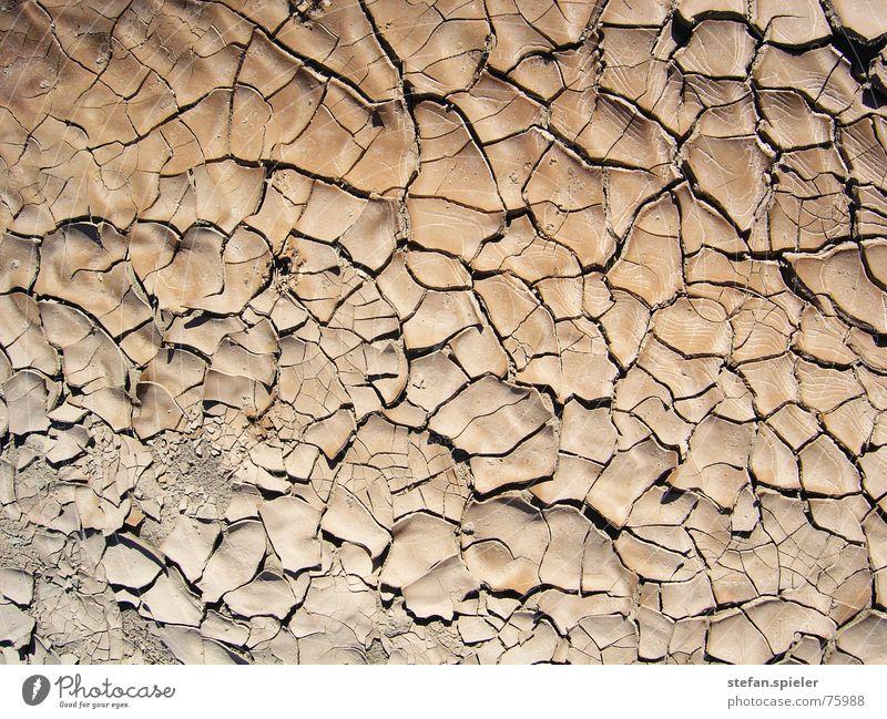 Brown Earth Floor covering Desert Hot Tile Dry Crack & Rip & Tear Progress