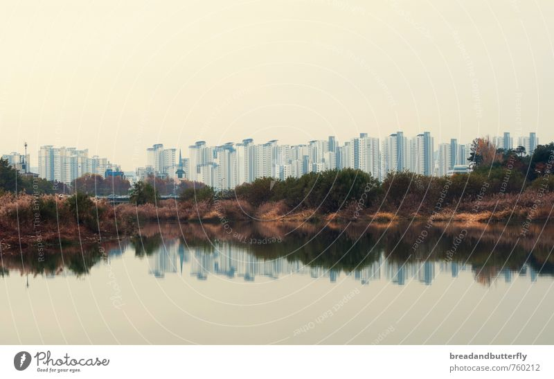 reflection Water River bank South Korea Asia Town House (Residential Structure) High-rise Cold Gloomy Modern Symmetry Growth Colour photo Exterior shot