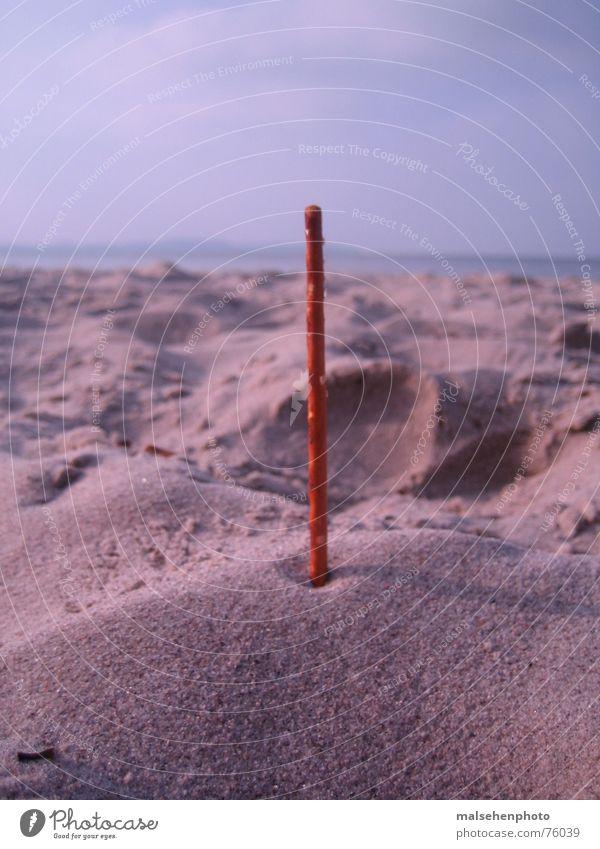 Salt stick on the beach Beach Horizon Rod Vertical Sand Contrast Baltic Sea