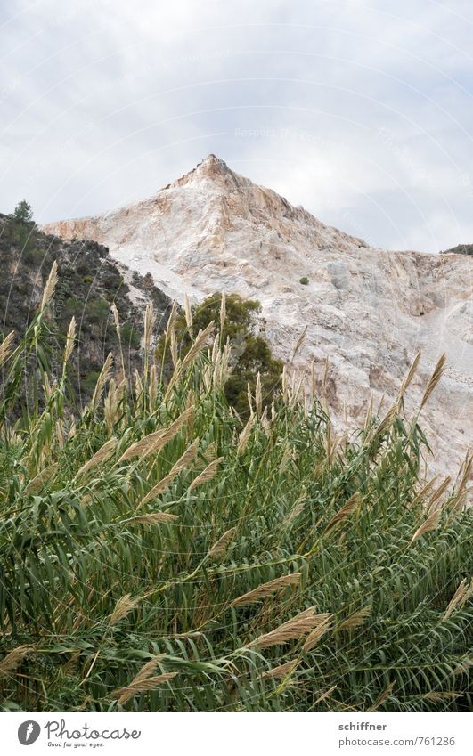 Nature Plant Landscape Clouds Environment Window Mountain Gray Rock Point Peak Dry Common Reed Foliage plant Mining Quarry
