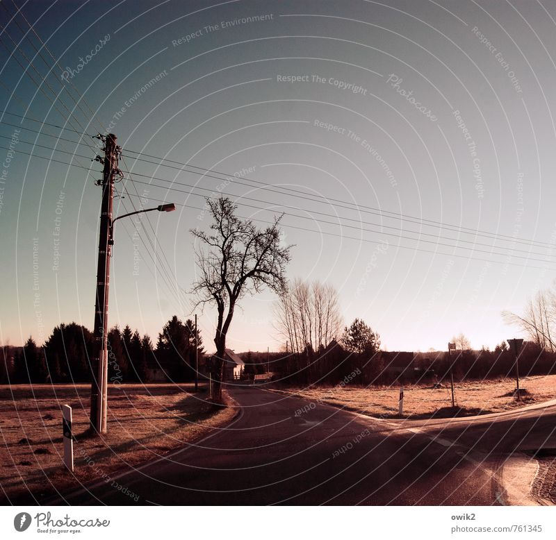 Between the villages Energy industry Electricity pylon Cable Cloudless sky Horizon Beautiful weather Tree Transport Street Curve Dark Colour photo