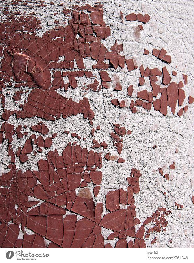 Old Dye Gloomy Concrete Transience Change Part Derelict Decline Crack & Rip & Tear Bizarre Destruction Flake off Patient Crust Burgundy