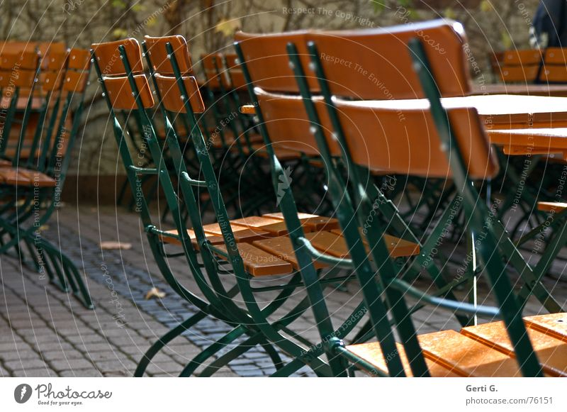 Autumn Wood Back Sit Table Beautiful weather Chair Gastronomy Seasons Autumnal Beer garden Roadhouse Beer table